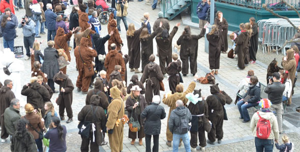 Record du plus grand rassemblement d'ours